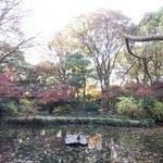 50822287 - 素敵な庭!