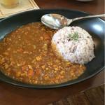 フロッグ カフェ - ある日のランチメニュー、根菜のキーマカレー
