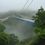 50926448 - 竜神大吊橋 鯉のぼり沢山 高さ100m以上✨