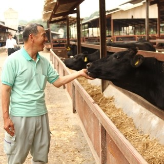 牛肉のおいしさを増す秘訣は、自然と餌、加えてたっぷりの愛情