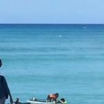 DUKE'S WAIKIKI - わんこ波に乗る