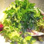 虫の巣 EST - Freshハーブたっぷりのグリーンサラダ