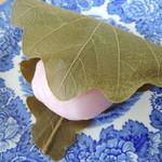 御菓子司 せき口 - 料理写真:味噌餡かしわ餅