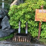 谷川岳パーキングエリア(上り線) スナックコーナー - 谷川岳の水汲み場