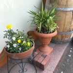 taverna la amico - エントランスに可愛い花鉢