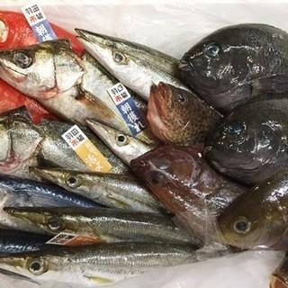 羽田市場の超速鮮魚!(ガイアの夜明けに取材されました)
