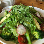 軽井沢ガーデンテラス 旬食厨房 - 高原野菜もりもりサラダ