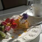 ベルルージュの森 - ケーキセット