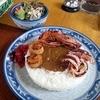 季の栞 - 料理写真:シーフードカレー&サラダ