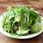 フレッシュライムの香るグリーンサラダ