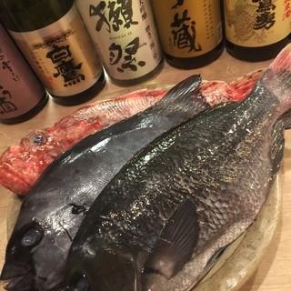 関西で、取り扱いが少ない「熟成魚」!!