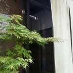 51663716 - 淡緑色の暖簾と、夏紅葉。