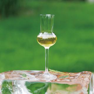 玉茶(氷出汁)