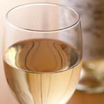 厳選イタリアワイン(DON CARLO)