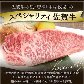 ランチタイムは国産のステーキをご堪能ください
