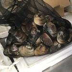 貝増商店 - 貝増さんが競り落とした蛤