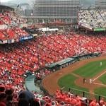 51842359 - カッパで赤く染まった                       マツダズームズームスタジアム広島☆広島市民球場