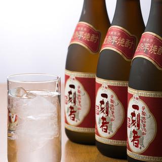 500円飲み放題スタート!