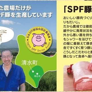 十勝清水産「SPF豚」