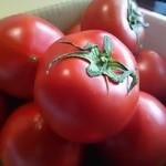 伊太めし?こるて - 高糖度トマト「アメーラ」塩麹とバージンオイルを添えますが1カットはそのままで食べましょう!