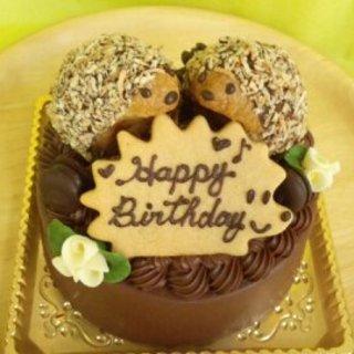 素敵な一日を演出☆地方発送もOK『はりねずみのチョコケーキ』