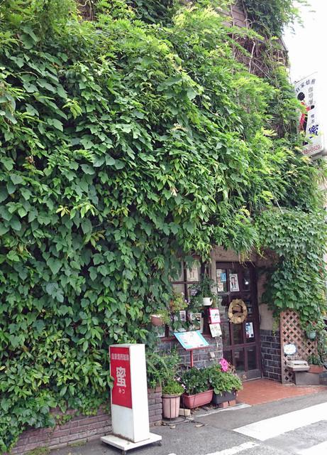 純喫茶 蜜 - いろいろなツル性植物が混在して密林状態です
