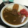 本家絶品! 煮込みカツカレーの店 - 料理写真:煮込みかつカレー780円(税込)