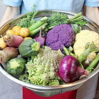 契約農家より毎日新鮮な野菜をお届け