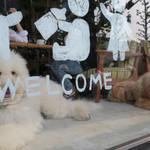 コマザワ パーク カフェ - 大きなムク犬が2匹