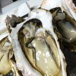 bisteria-odebu - 三重県鳥羽産の岩牡蠣