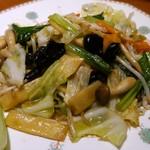 52153560 - 野菜炒め (300円)
