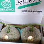 吉田農園 - キングルビー 5,300円/2玉