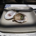 Hog Island Oyster Co. Napa oyster bar. -