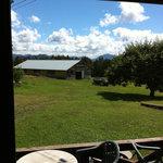 日野水牧場 ファームハウス - 店内から牧場を♪気持ちいいです。