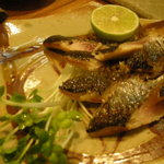 よこ川 - 秋刀魚のたたき
