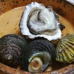 52265912 - サザエ、牡蠣、ヒオウギガイ
