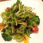 トラットリア・イル・フラゴリーノ - 単品サラダ