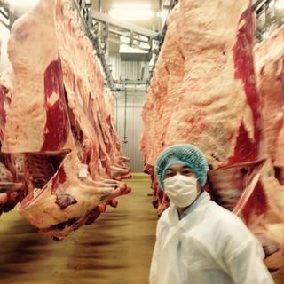 牛肉の卸売業者による確かな目利き