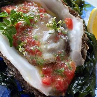 只今解禁中の徳島鳴門の岩牡蠣!