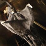 世田谷上町場末酒場 HUGGY BEAR'S - 入り口に揺れる骸骨。