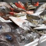 海鮮蔵 魚魚魚 -