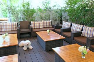 Be Terrace SECONDHOUSE 白金店 - スタンバイOK〜♬