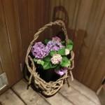 ひろとし - 店前に飾られた紫陽花がキレイ。