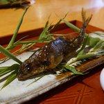 52706220 - 福井県笙の川、鮎の炭焼き