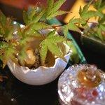御料理 樋渡 - 八寸(山口県鮑の蒸しもの(煮切ったしゅとうをかけて)
