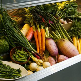青木農園の新鮮野菜