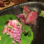 Yuuduki - 鯛とカンパチのお刺身