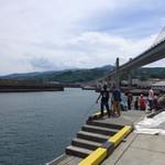 わらべ菜魚洞 - (おまけ)小田原漁港は西湘バイパス高架橋の真下に位置する。これは世界初の「エクストラドーズド橋」である(1994年竣工)