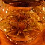 ショコラ - 花茶