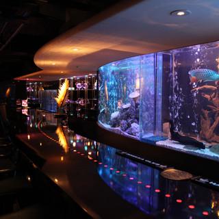 まるで夜の水族館!ムードたっぷりのオシャレな空間